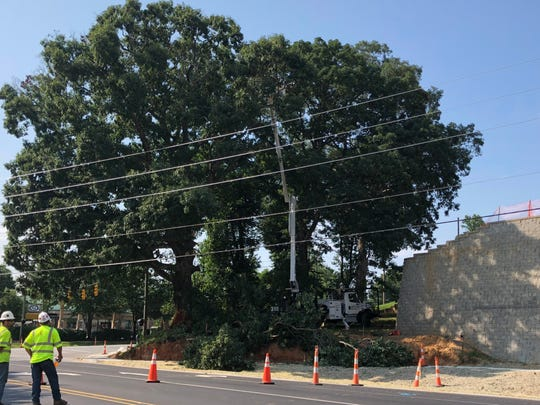 Crews remove an oak tree at the corner of Mills Gap and Sweeten Creek roads on Monday. The tree was vandalized over the weekend, which forced its removal, said Jason Walls with Duke Energy.