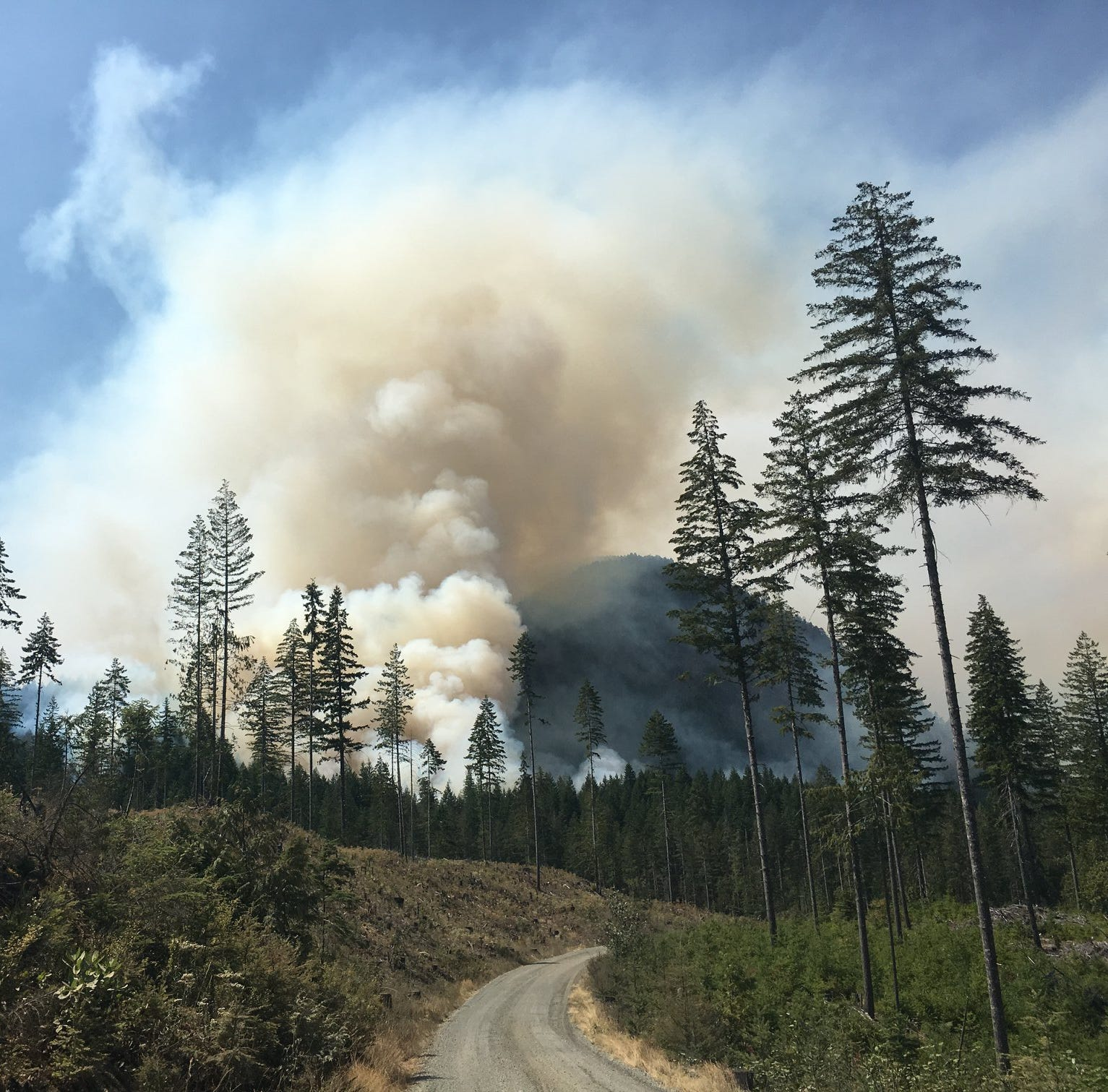 Weekend rains help stall growth of Maple Fire in Olympic National Forest