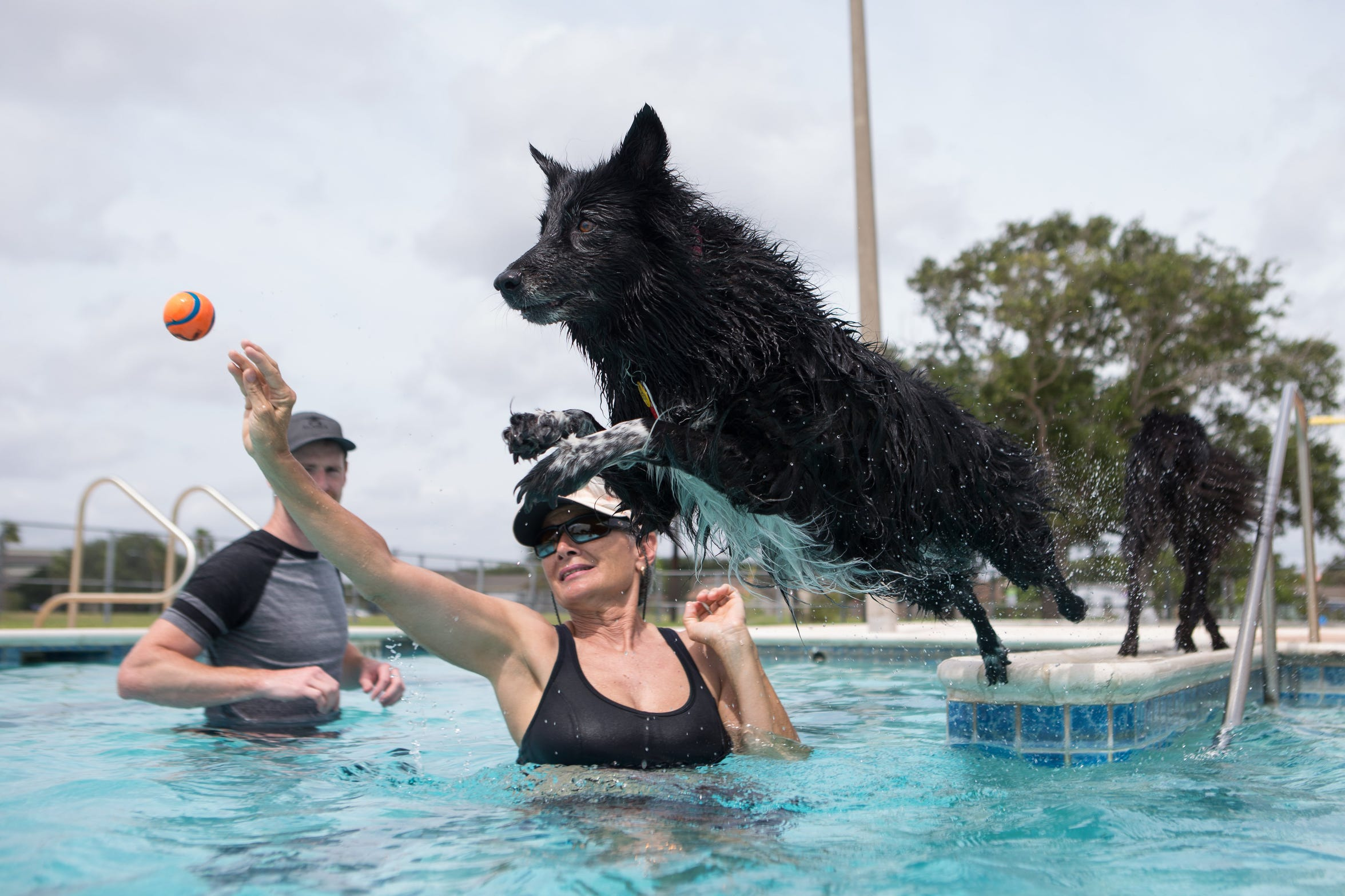 The City of Corpus Christi Parks and Recreation Dept.'s annual Doggy Dip is from 10 a.m. to 1 p.m. Saturday, Aug. 18 at HEB Pool, 1520 Shely St.