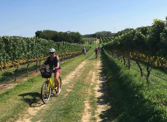 Pour and Pedal conducts winery bicycle tours.