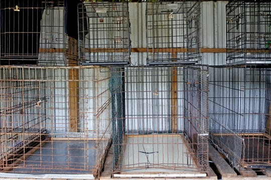 Illustration image: Empty metal cages in animal shelter.