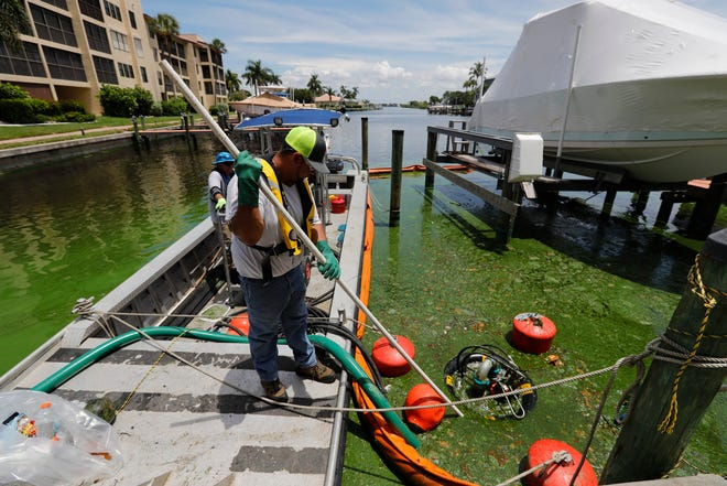 Efforts to help minimize water quality issues and algal blooms throughout Lee County