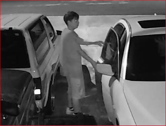 An alleged vehicle burglary suspect captured on a home security camera in Cape Coral.
