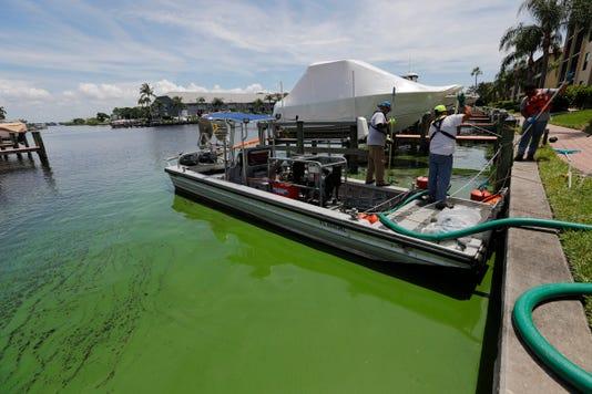 16 Algae Clean Up