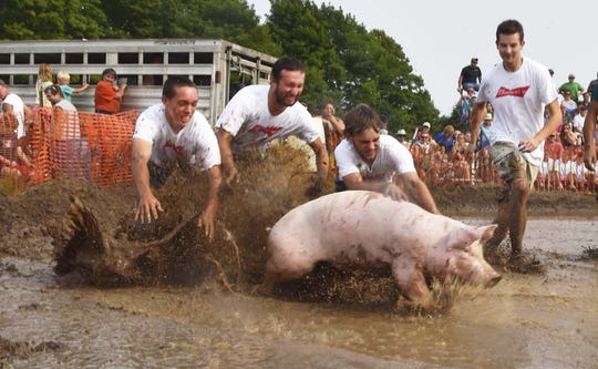 The Flanigan Distributing team competes in last year's mud pig wrestling event at the Valmy Thresheree. The goal is to capture the pig, carry it to the center of the mud pond and place it on a barrel within a minute.
