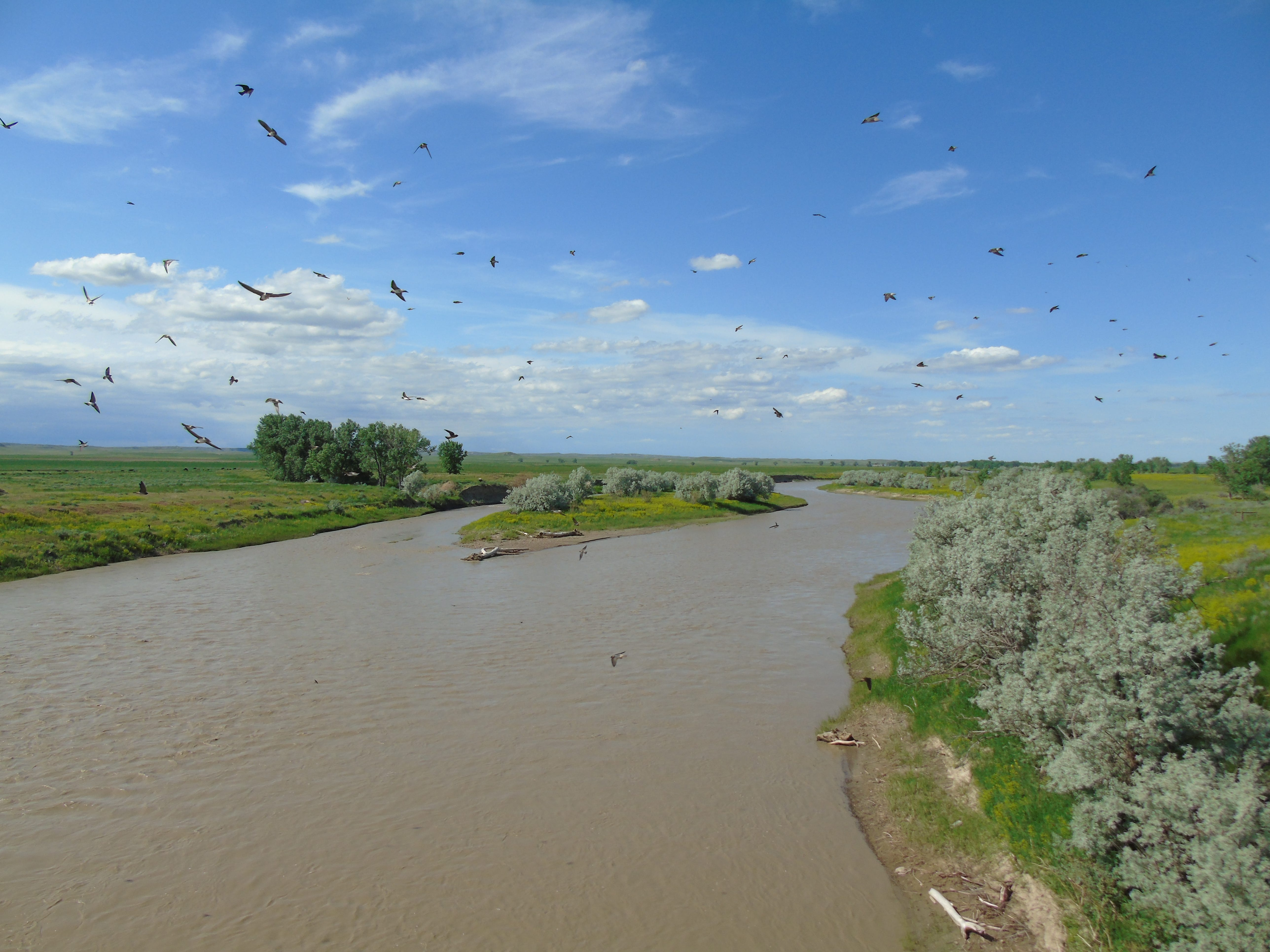 The Powder River flows near Powderville in southeast Montana.
