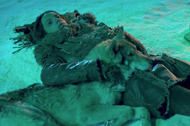 """A young hunter (Kodi Smit-McPhee) bonds with a lone wolf in the Ice Age adventure, """"Alpha."""""""