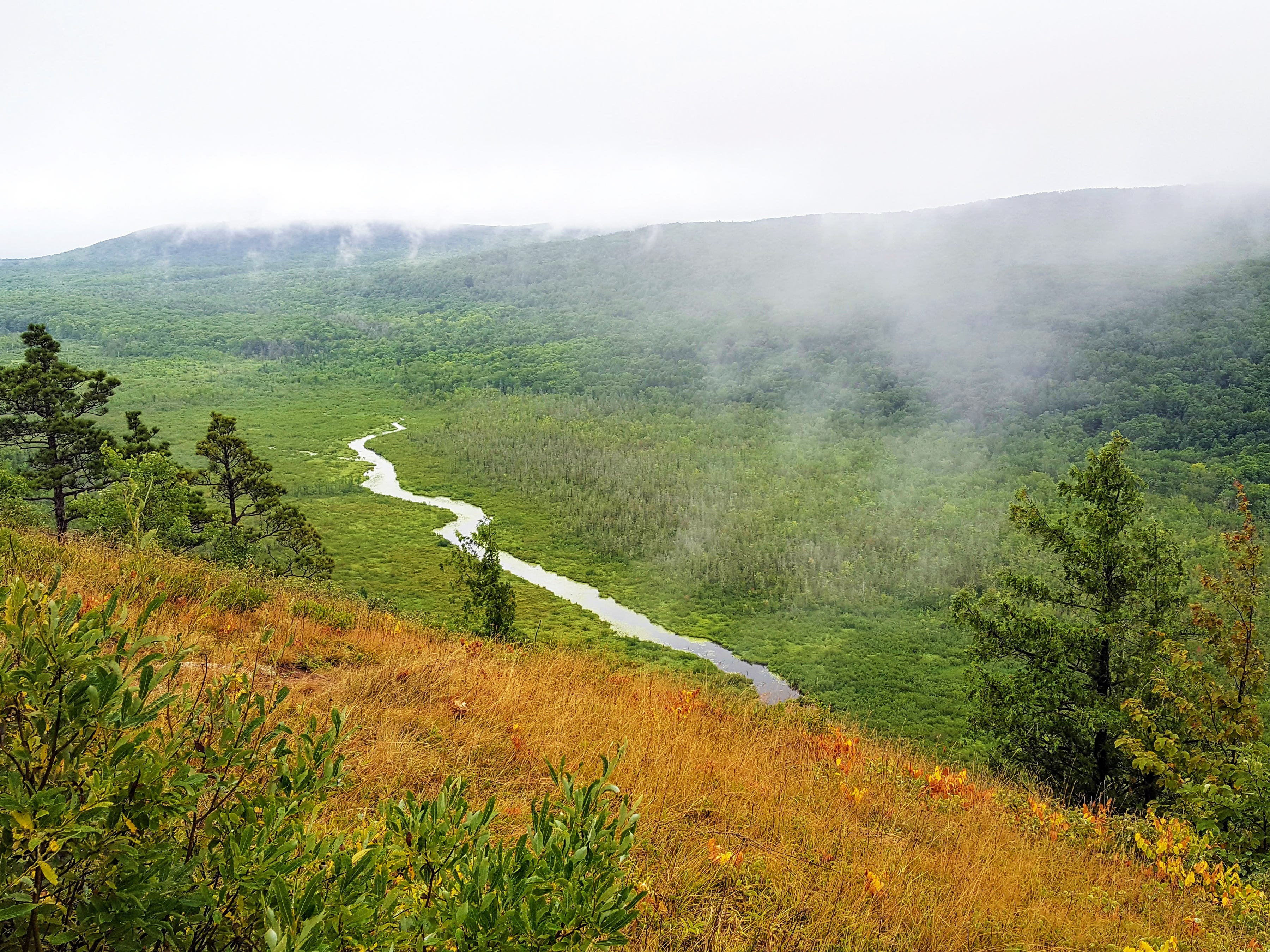 The Upper Carp River winds through a foggy valley in the Porcupine Mountains Wilderness State Park in Michigan's Upper Peninsula.