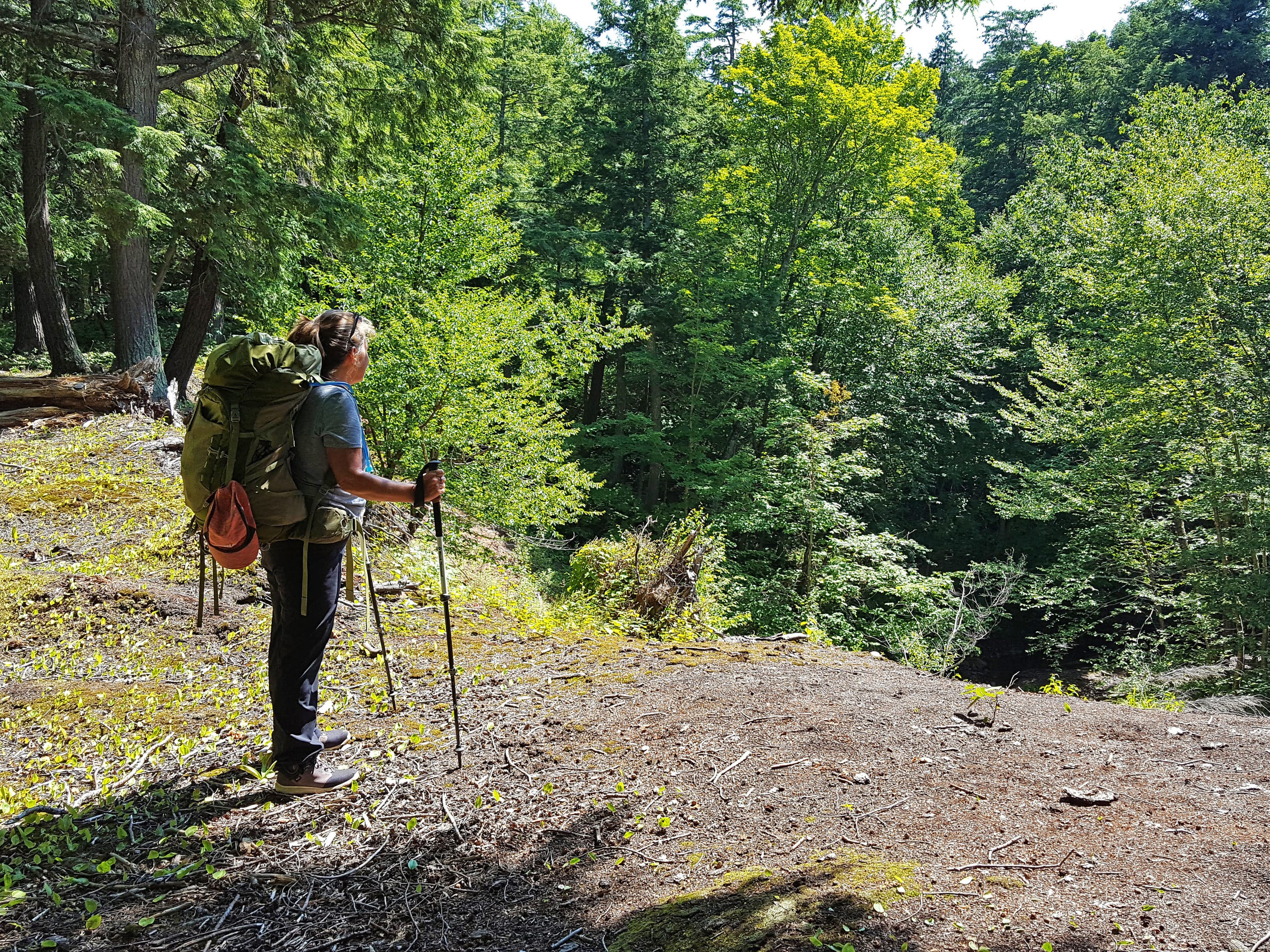 Carol Lewis looks over a ravine while backpacking on the Lake Superior Trail in the Porcupine Mountains Wilderness State Park in Michigan's Upper Peninsula.