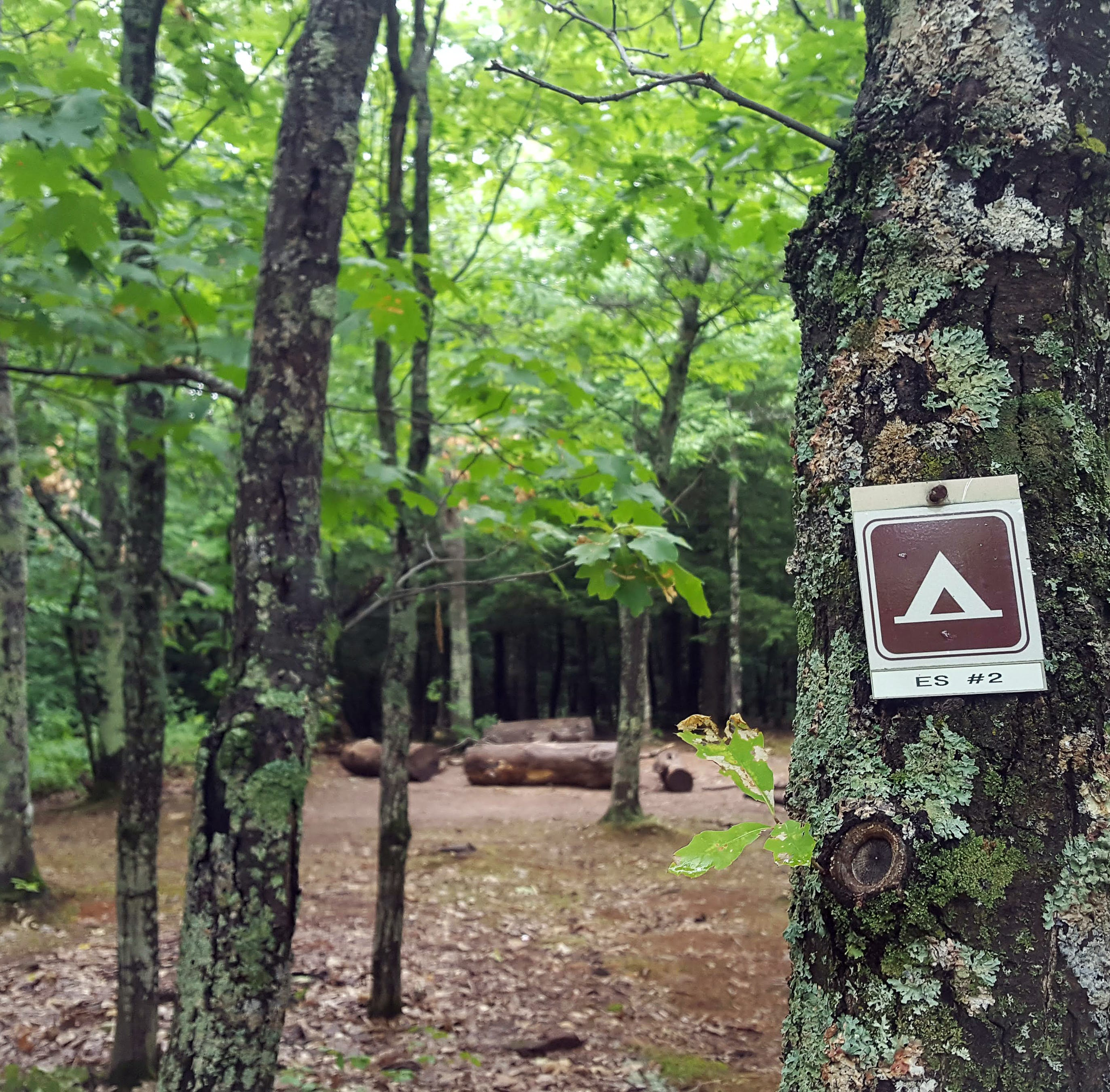 Heavy rainfall prompts early campground closures in U.P.