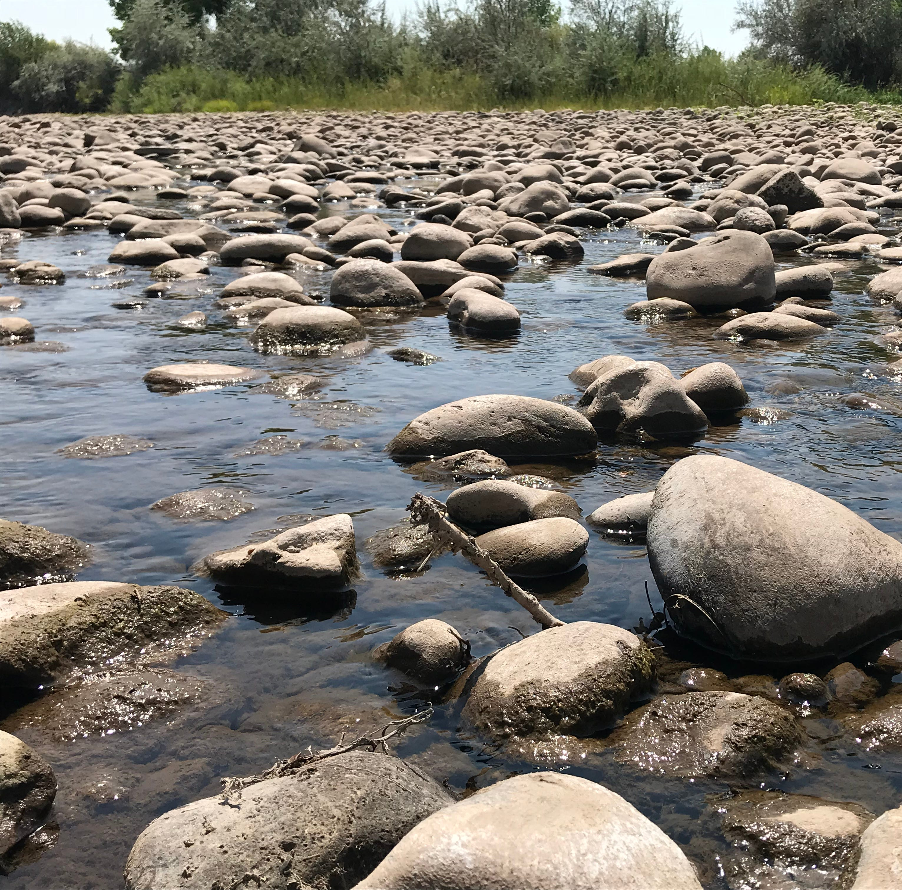 Officials hopeful rain in Silverton could increase flow in Animas River