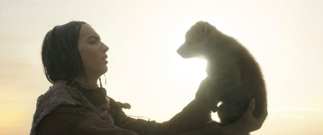 """Keda (Kodi-Smit-McPhee) meets a wolf pup in """"Alpha."""""""