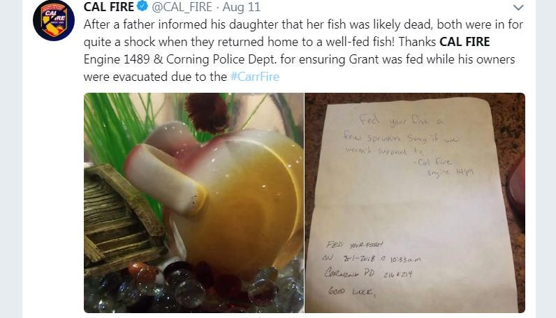 Firefighters and police helped feed Grant the betta fish after his owners had evacuated, according to a Cal Fire tweet on Saturday.