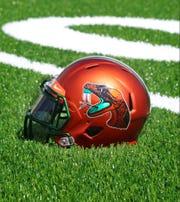 FAMU football helmet.