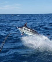 The Shut Up & Fish Guam Marlin & Tuna Fishing Tournament will be held 6 a.m. to 6 p.m. June 15.