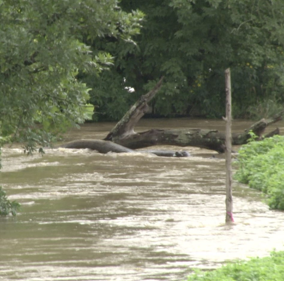 Three New Castle County rivers pass flood stage Monday