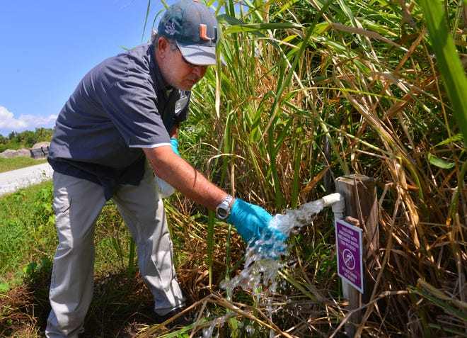 Eric Casavant with SGS North America Inc. was out Tuesday taking water samples from sewage lift stations around Cocoa Beach and reuse water at different locations. He was taking two 125 milliliter bottles from each location. Casavant takes a water sample of reuse water on the north end of the city.