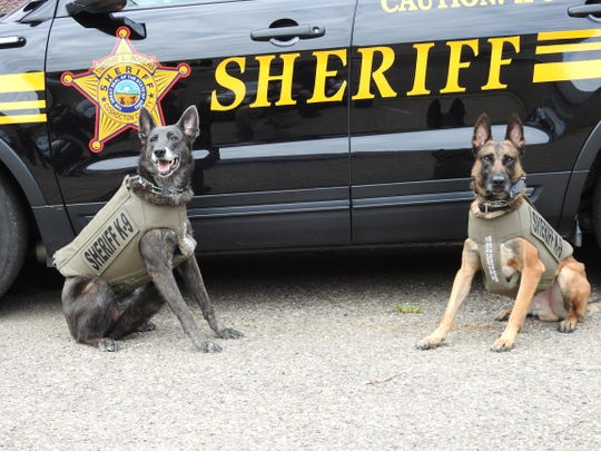 Henata and Chili are K-9 Officers with the Coshocton County Sheriff's Office. The pair recently received new bullet-proof and stabbed-proof vests to help protect them in the line of duty.