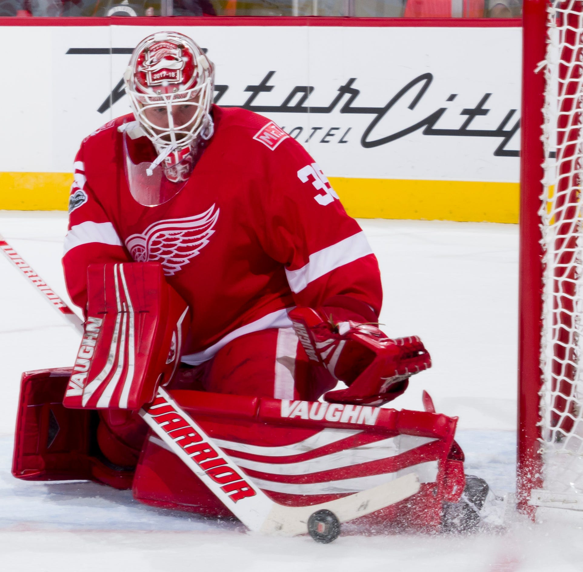 Wings' young goaltenders are a long way from ready
