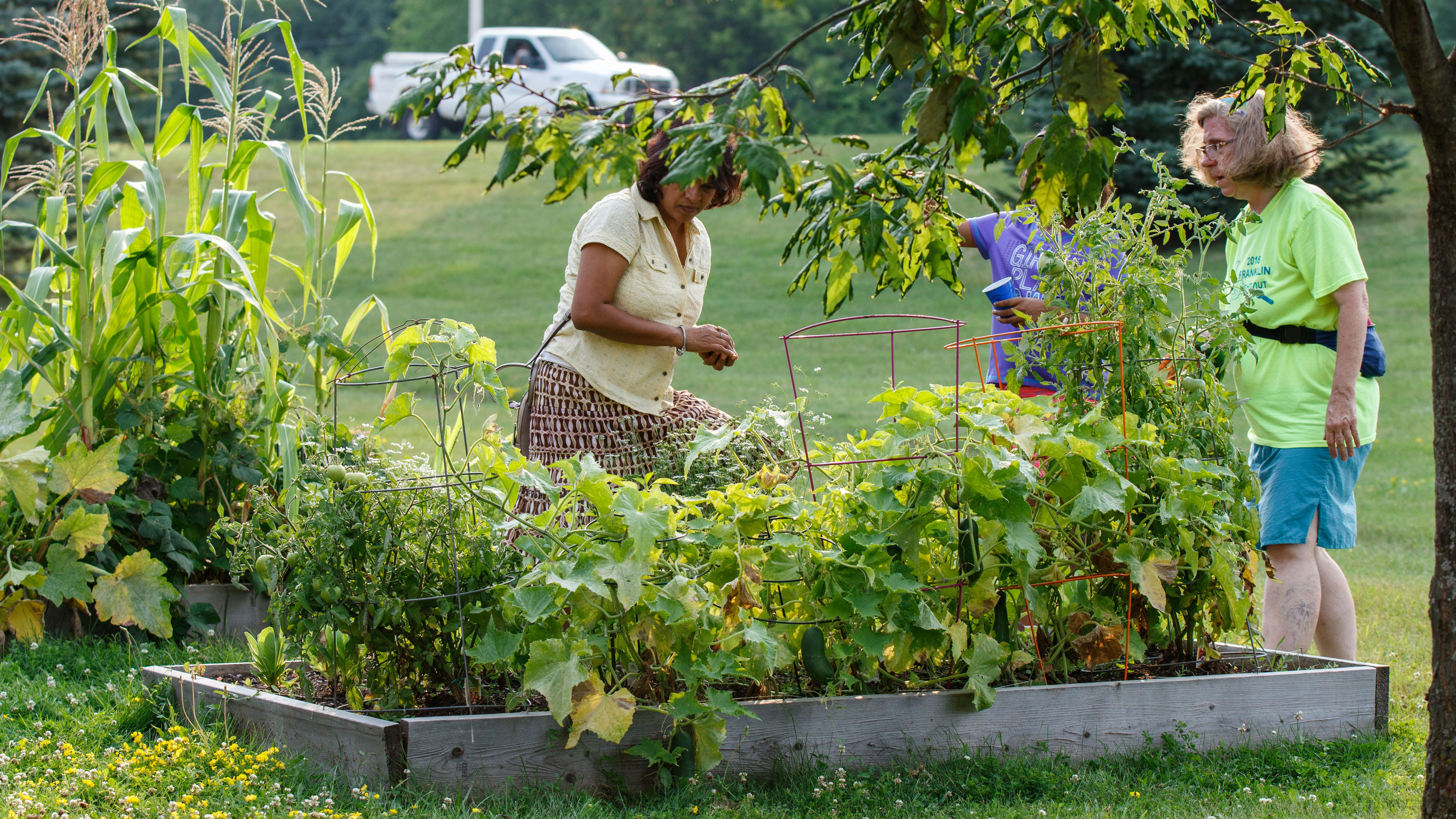 Growing vegetables can be tough for first timers. Here are 7 tips to get started.