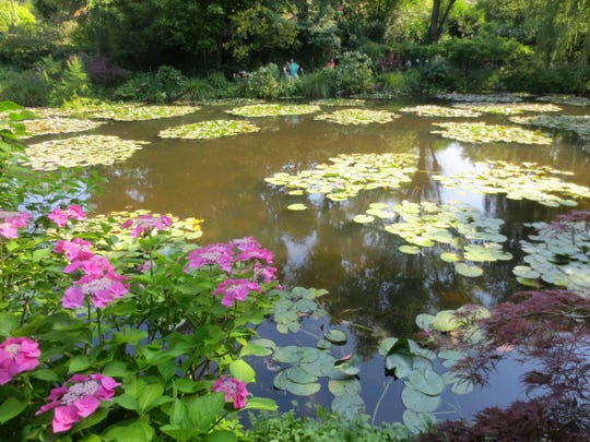 The famous water lilies in Giverny that Claude Monet painted during the last 30 years of his life.