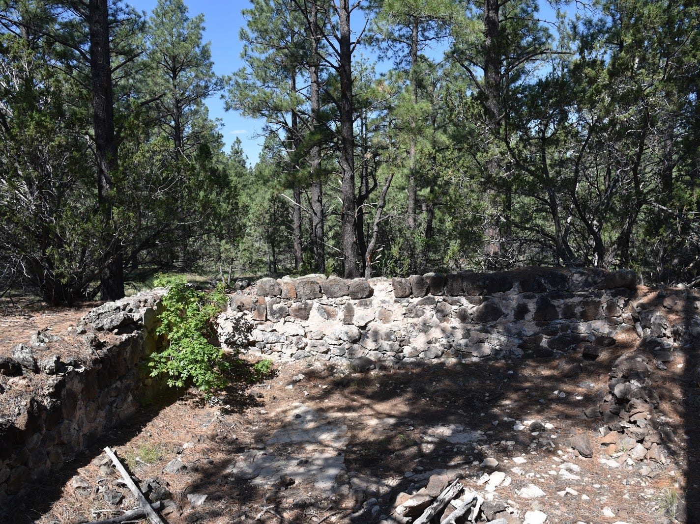 Ruins of a pioneer homestead.