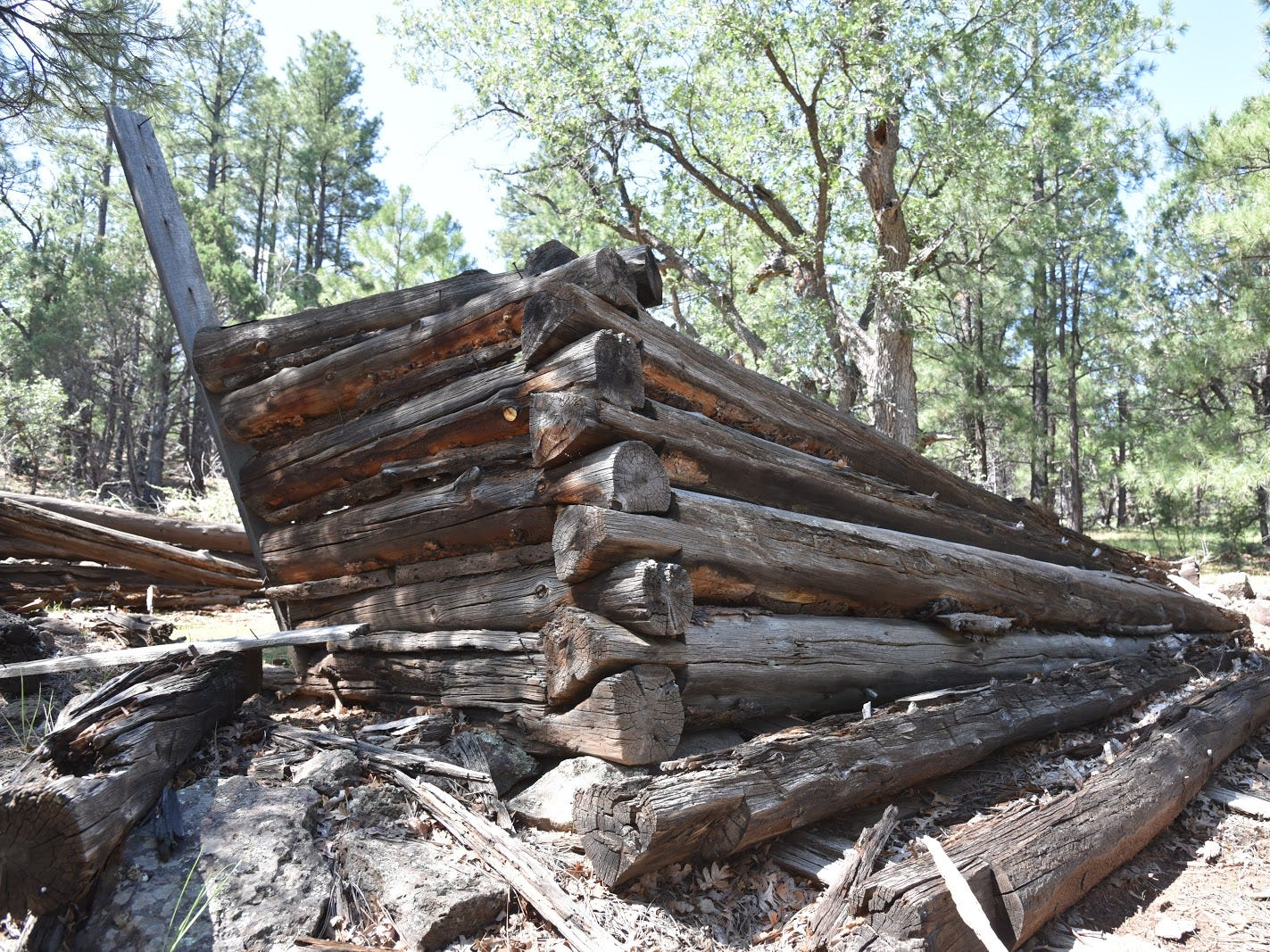 The ruins of an infamous pioneer cabin.