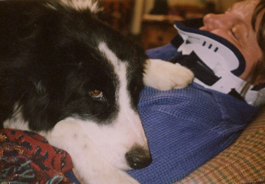 Deborah Potter said Buster, her border collie shelter dog, helped her get through PTSD.