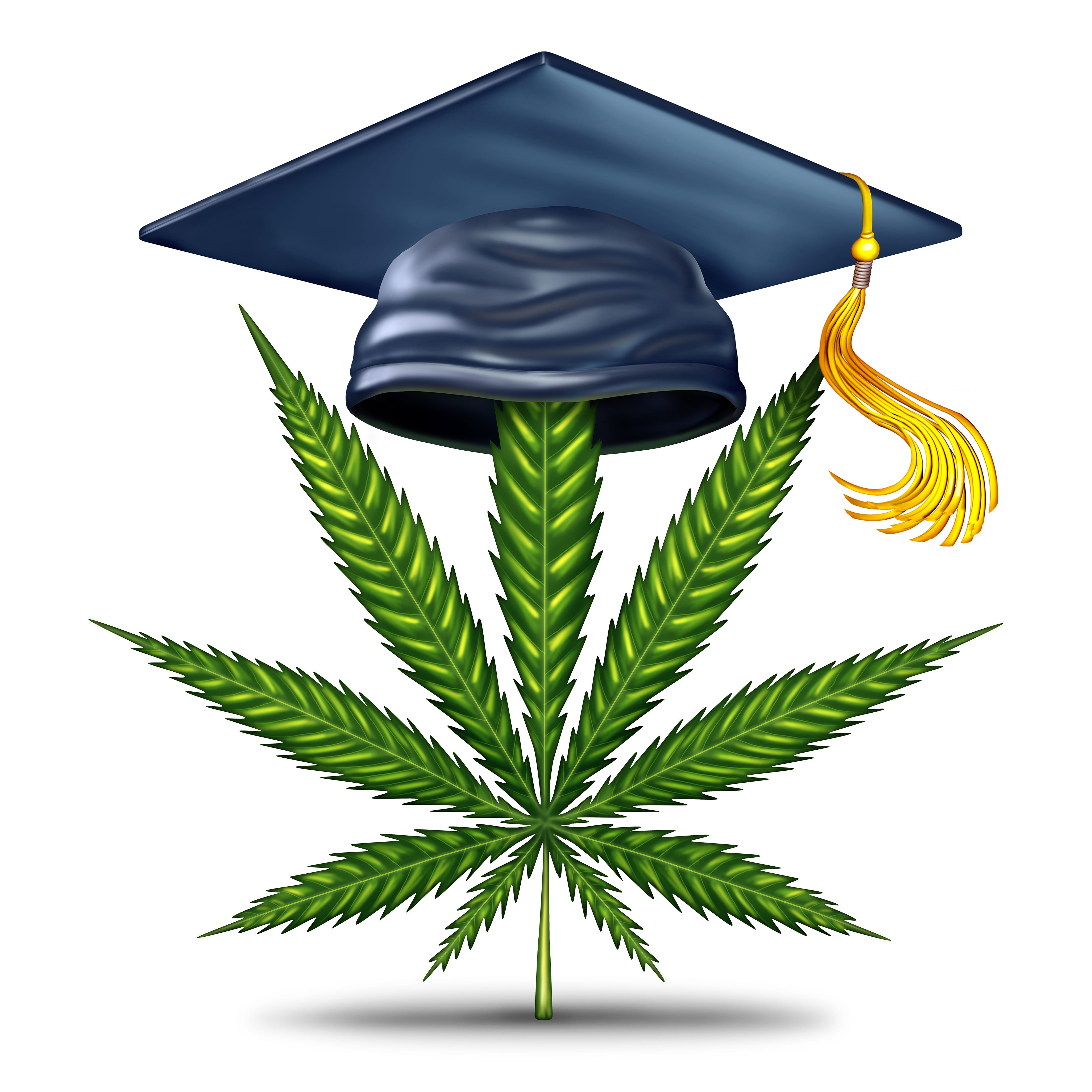 Even if NJ gets legal weed, don't expect to get high (legally) on college campuses