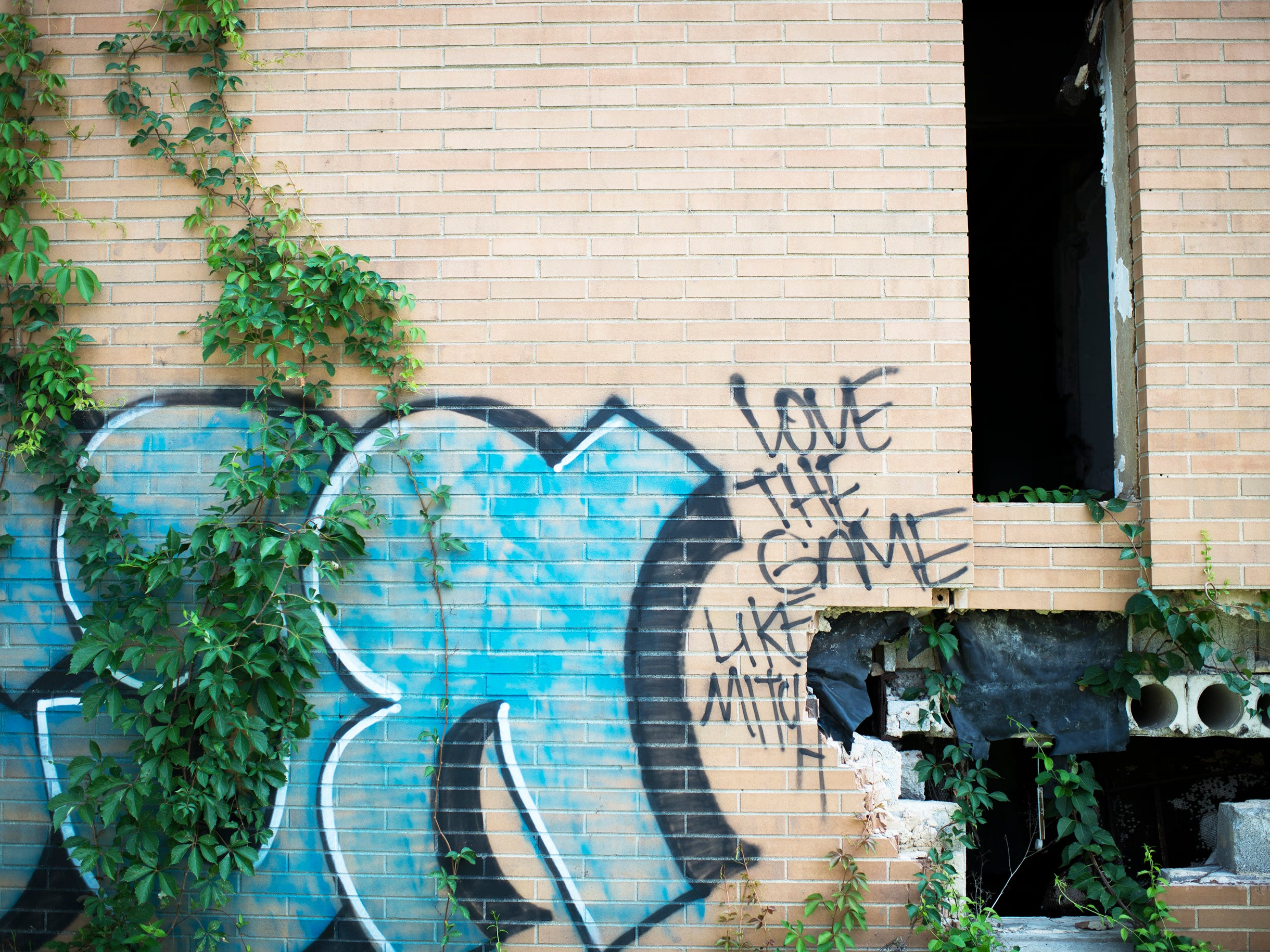 Graffiti covers the walls of crumbling buildings at the Camden Labs site Wednesday, Aug. 15, 2018 in Camden, N.J. The former toxic and illegal dumping site will be cleaned and cleared to make way for recreational open space.