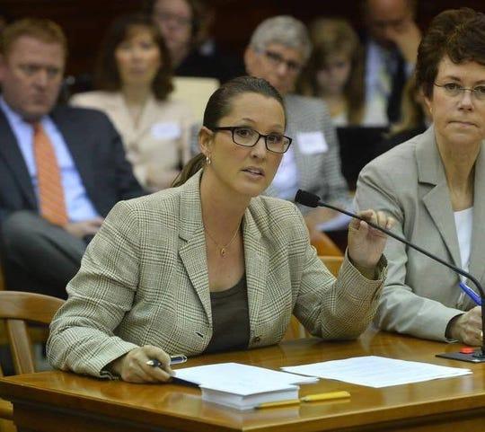 Lisa Posthumus Lyons has been named Bill Schuette's running mate for the November election.