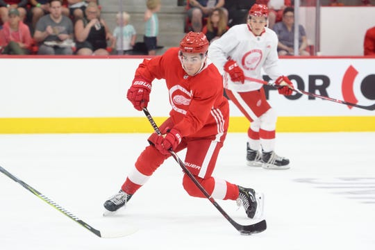 The Red Wings selected right wing Filip Zadina with the sixth overall pick in the NHL draft.