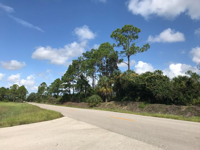 Cape Coral's Planning and Zoning Commission on Wednesday redesignated 200 acres of land in northeast Cape for multifamily housing.