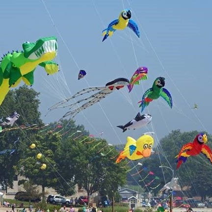 Ever wanted to watch professional kite handlers? 'Soar on the Shore' is coming to Algoma