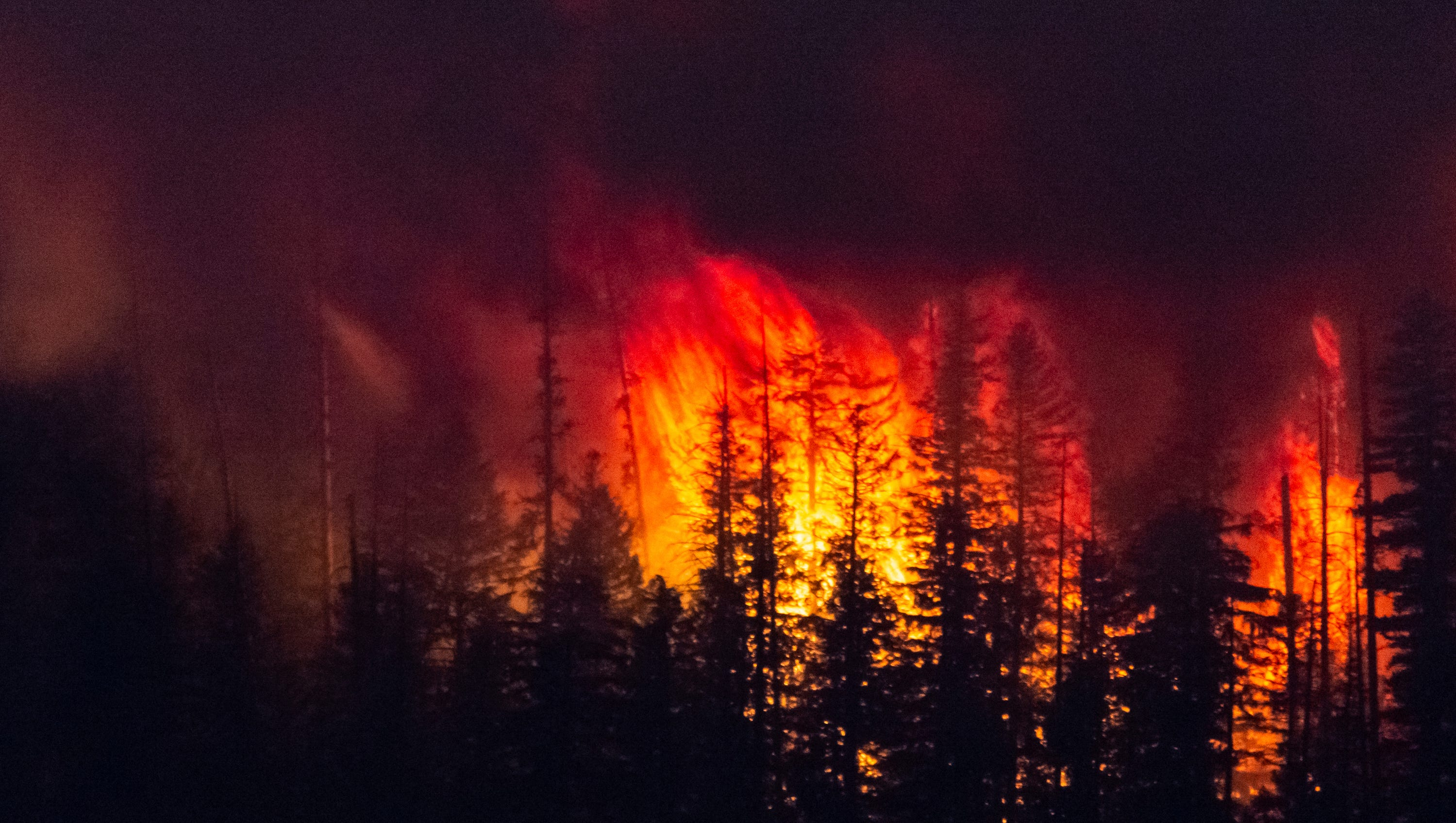 Fires this year have burned 143 square miles acres across Montana, which is about 7 percent of the record 2,134 square miles that burned in 2017.