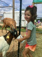 Stella Ann Reynolds, 5, of Brandon feeds a pygmy goat at the McClain petting zoo.