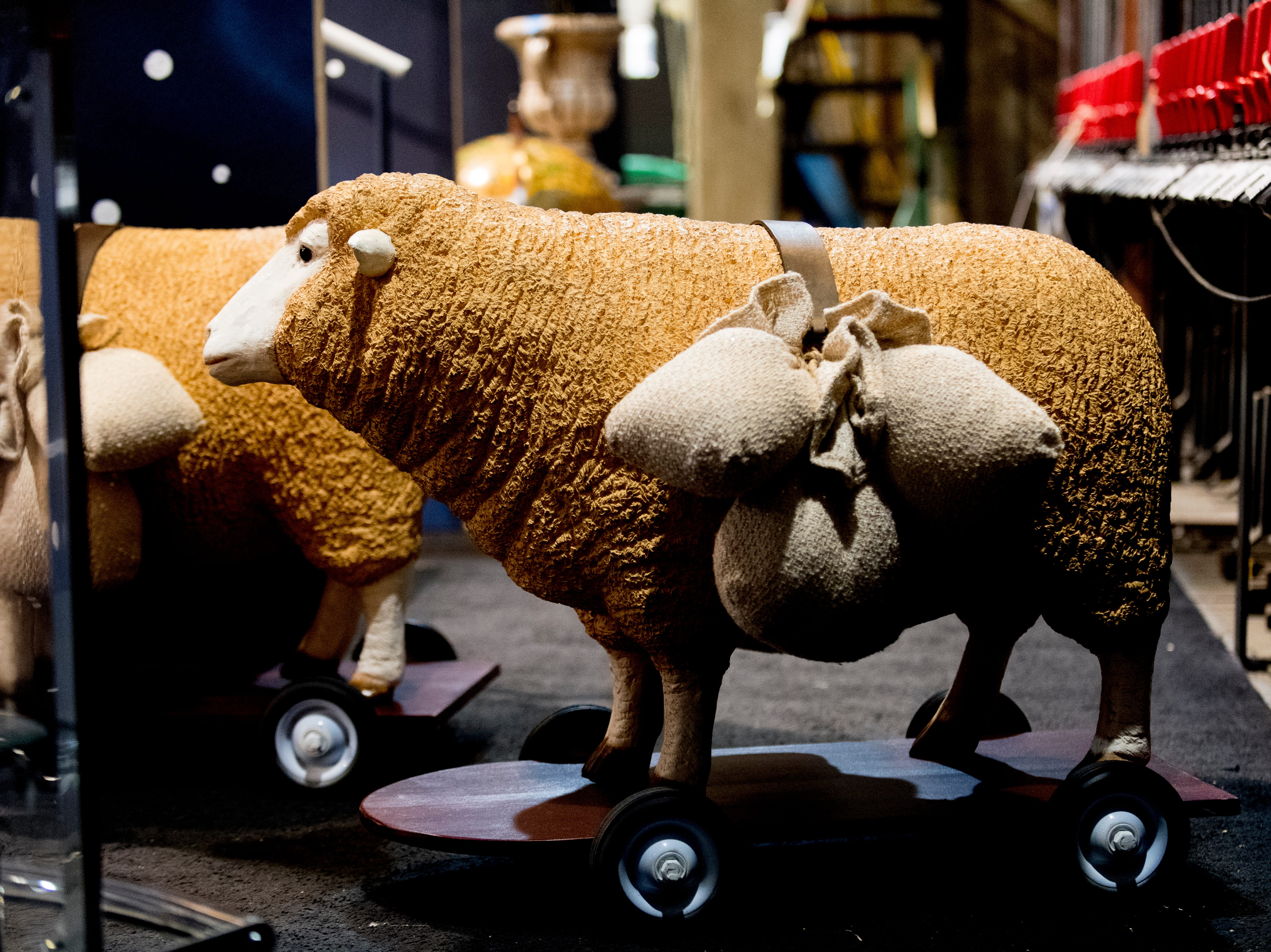 Sheep on wheels are part of the show as seen behind stage ahead of opening day for Candide at the Clarence Brown Theatre  in Knoxville, Tennessee on Tuesday, August 14, 2018. Leonard BernsteinÕs acclaimed operetta, Candide, is to open Friday, August 31, with previews beginning August 29.
