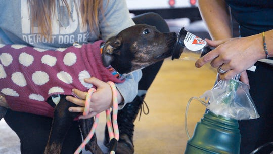 Each year it's estimated more than 40,000 pets die in fires, most succumbing to smoke inhalation. Radio Systems Corp.'s Invisible Fence brand is equipping fire departments with pet oxygen masks to help save their lives.
