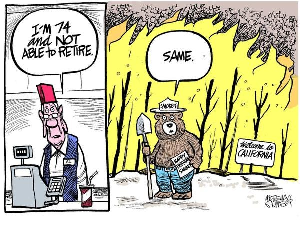 Did Smokey Bear Help Fuel Catastrophic Fires