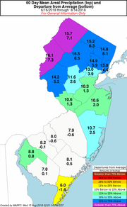 Much of North Jersey and the Shore area has seen significantly more rain this summer leading to mushroom growth.