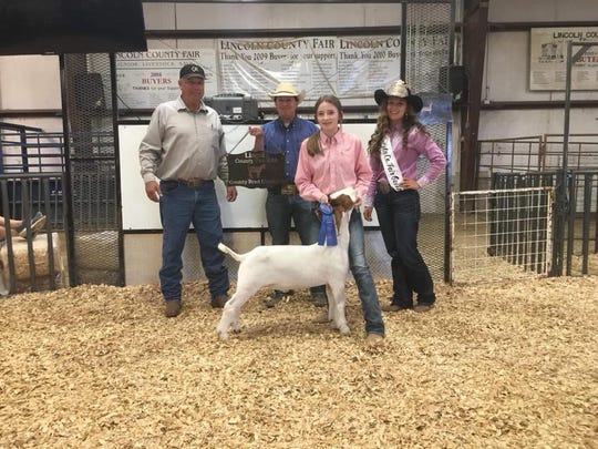 Lincoln county bred goa tby Bailey Wrye produced By Wyre Show Goats shows her project at the Lincoln County Fair.