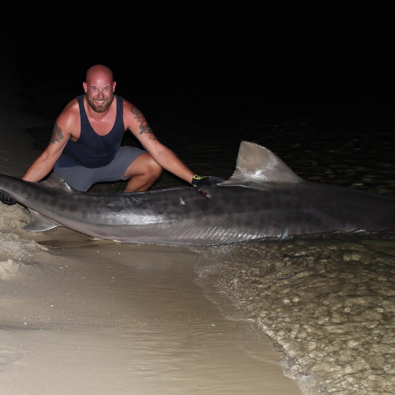 Pensacola fishermen catch 12-foot tiger shark at Fort Pickens