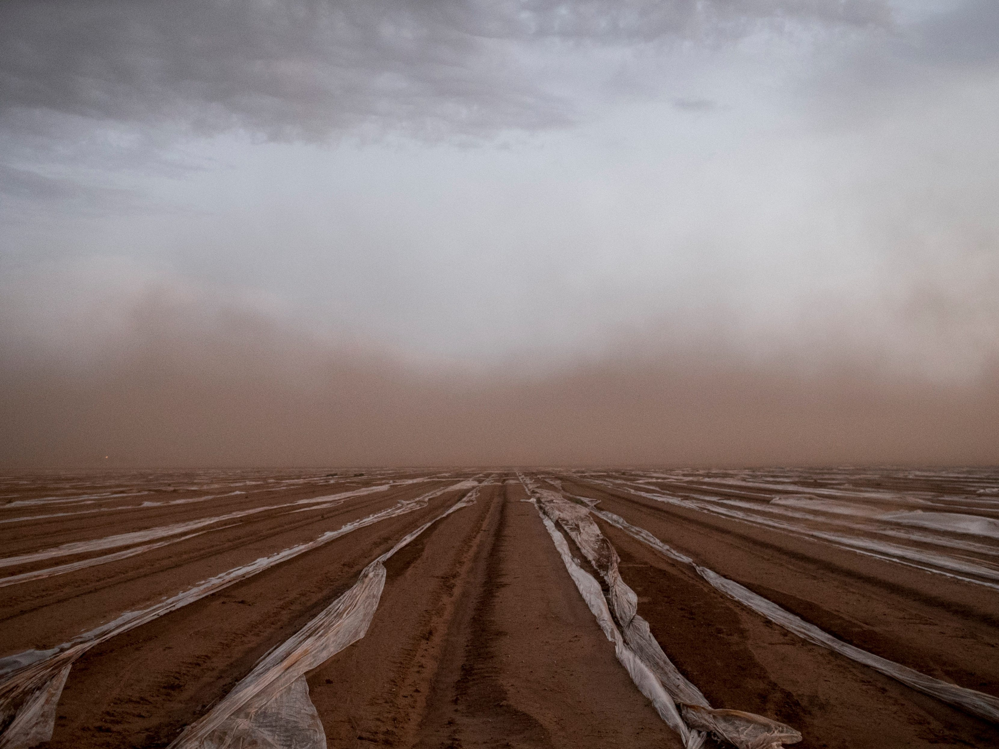 A cloud of dust passes over farm land during a monsoon storm in Scottsdale, Aug. 14, 2018.