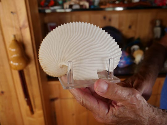 Larry Mann has a small paper nautilus collection from his travels around the world.