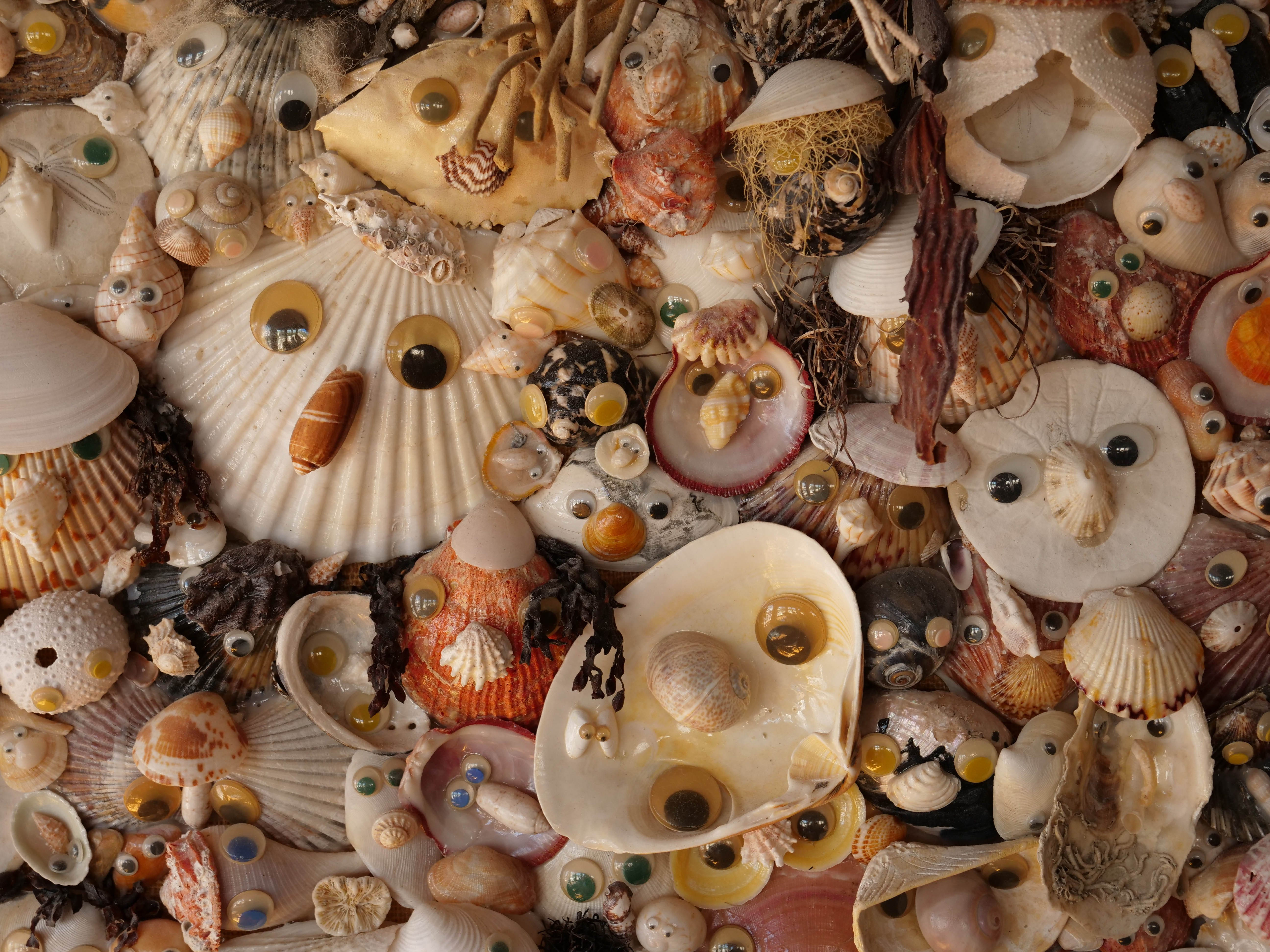 "Larry Mann's friends sometimes call the seashell collector and googly-eye extraordinaire ""Weird Larry."""