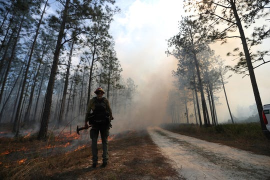 Firemen work on a controlled burn in the Apalachicola National Forest on Tuesday, Feb. 27, 2018. In June, a state-run controlled burn raged out of control, causing massive damage in Eastpoint, Fla.