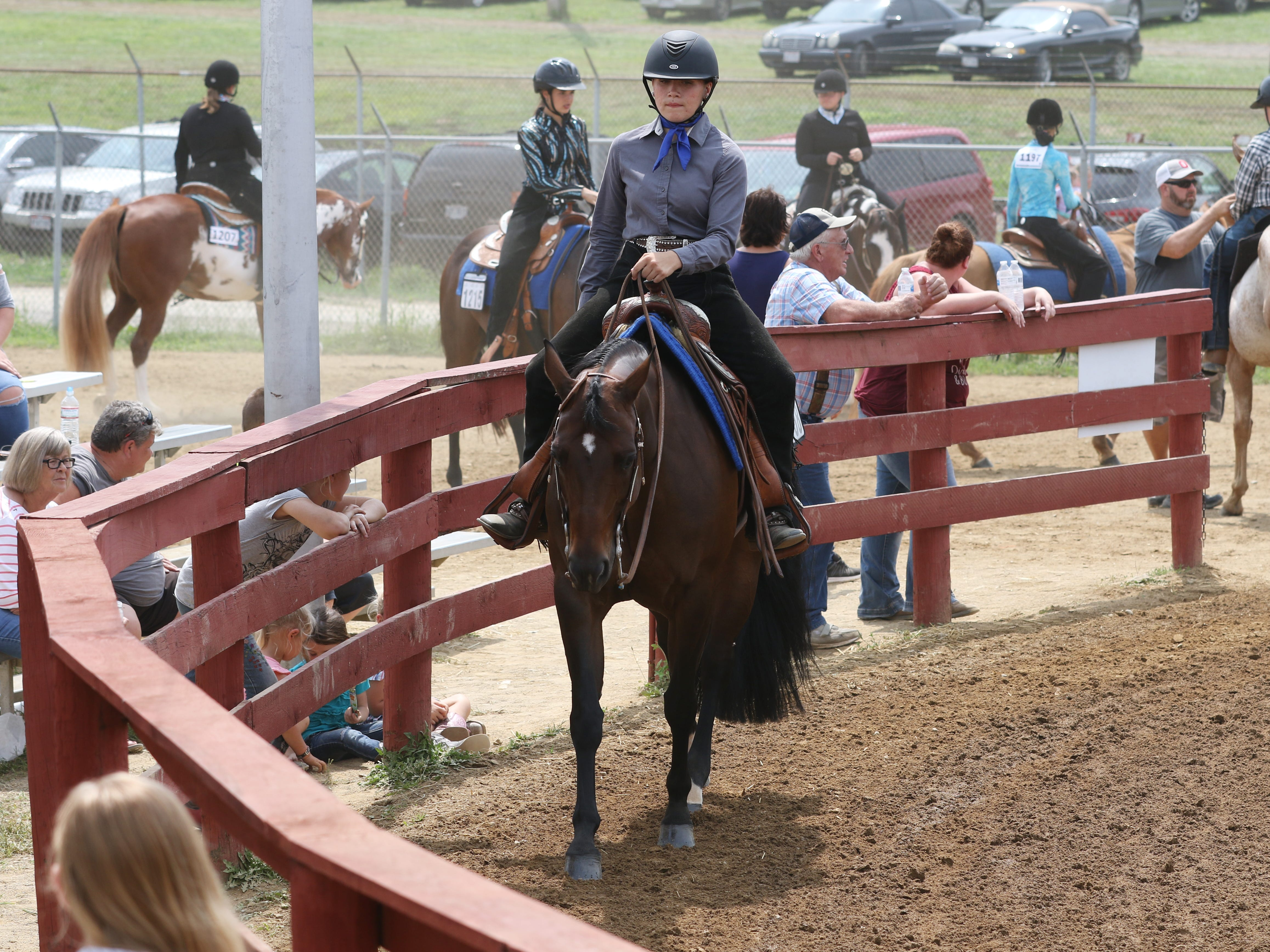 Junior Fair Western, English and Production classes were judged at the Muskingum County Fair on Wednesday.