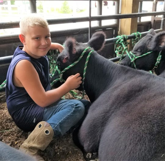 Dylan Sotherden showed an Angus heifer and a sheep this year at the fair.