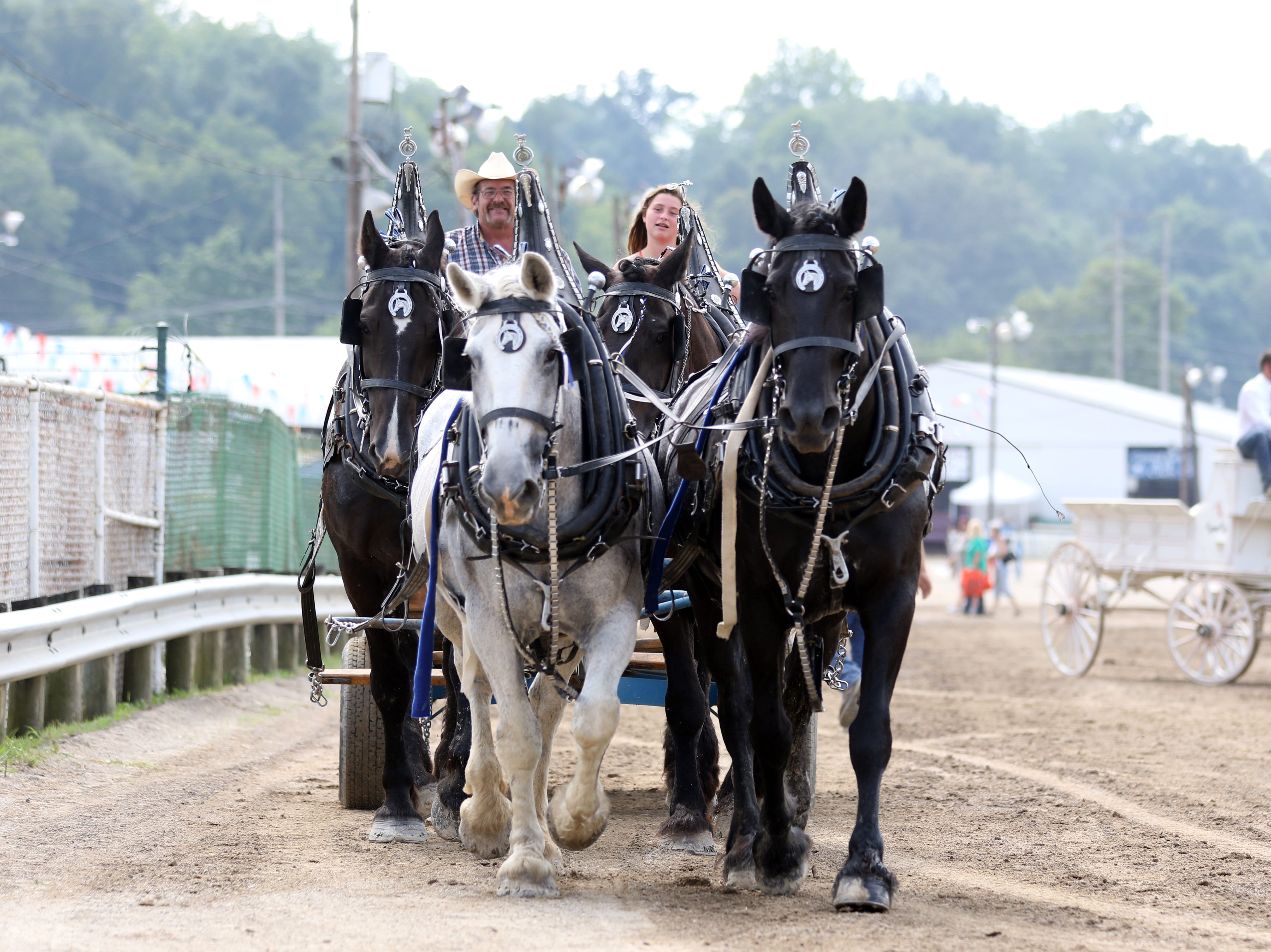 Draft horse judging concluded with the four-horse hitch in front of the Grandstand at the Muskingum County Fair on Wednesday.