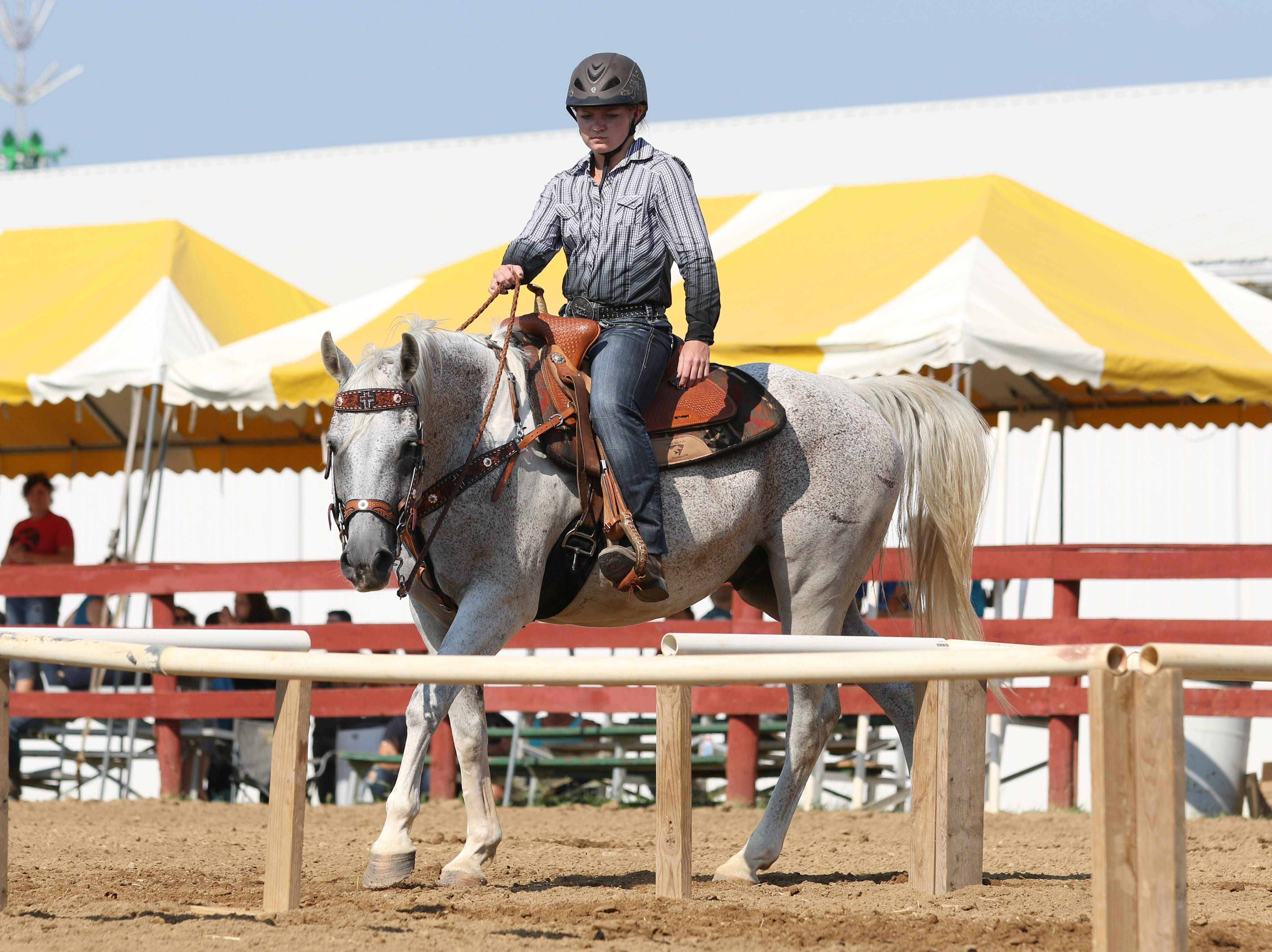 The speed and control event during the first day of horse shows at the Muskingum County Fair on Tuesday.